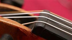 Всероссийский конкурс композиторов на лучшее произведение для контрабаса в рамках фестиваля «Душа контрабаса»