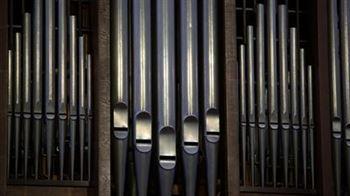 Онлайн мастер-классы по классу органа