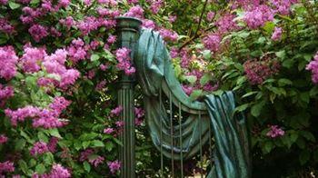 «Студенческая весна в Консерватории»