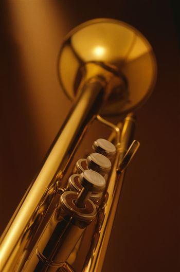 Мастер-классы Игоря Цецохо (труба)