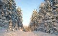 Зимние студенческие каникулы