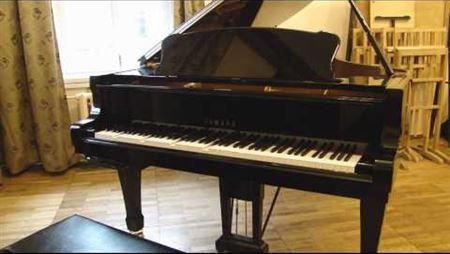 Диск-клавир Yamaha в Московской консерватории ч. 1