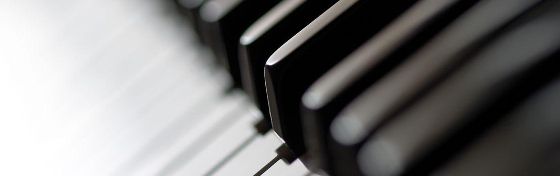 Максим Филиппов, Дарья Петрова (фортепиано)